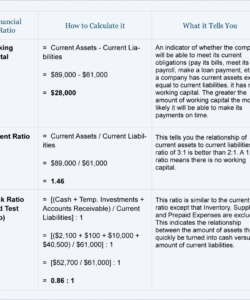 editable balance sheet ratio analysis  diclestickenco financial ratio analysis template doc