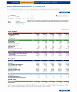 editable how to analyze non profit financial statements or 10 financial ratio financial ratio analysis template pdf