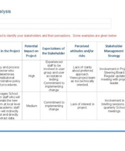 printable stakeholder analysis template  ape stakeholder analysis template project management