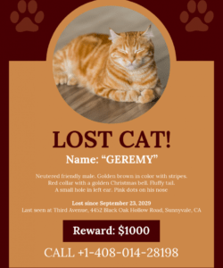 free brown missing cat poster template lost cat template flyer doc