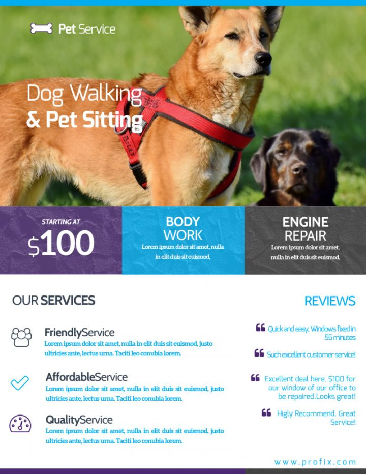 free dog walking & pet sitting flyer template  mycreativeshop dog sitting flyer template pdf