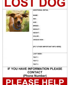 free lost dog template microsoft word  rendomi lost cat template flyer