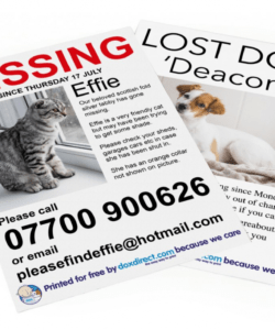 free missing pet posters  doxdirect lost cat template flyer