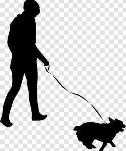 free pet sitting dog walking flyer  human behavior  walk dog sitting flyer template doc