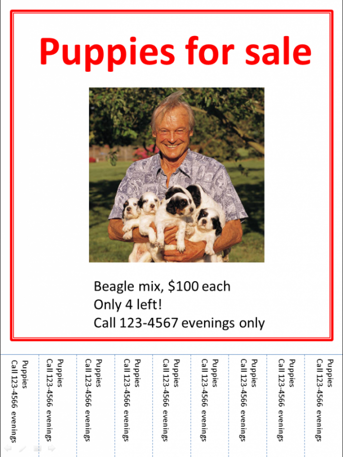 how to create a poster in powerpoint 2013 puppies for sale flyer template and sample