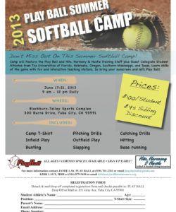 series of softball camp flyers  cat softball fundraiser flyer template pdf