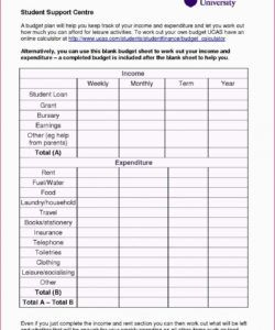 editable sample budget worksheet for college students  printable university student budget template pdf