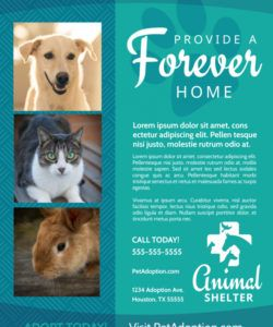 free animal shelter & pet adoption flyer template adopt a pet flyer template and sample