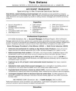 account manager resume sample  monster national account manager job description template and sample