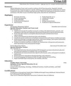 free best team lead resume example  livecareer team leader job description template pdf