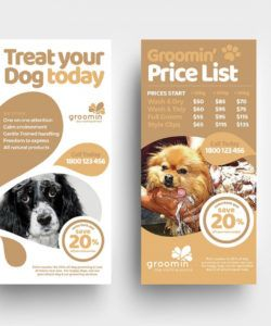 free pet service templates pack  psd ai & vector pet care flyer template pdf