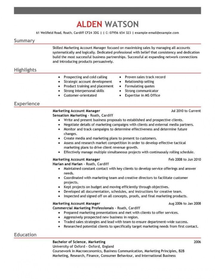 free professional account manager resume examples  marketing national account manager job description template doc