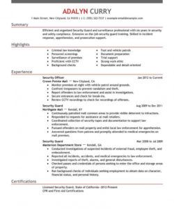 free professional security guard resume examples  safety security officer job description template pdf