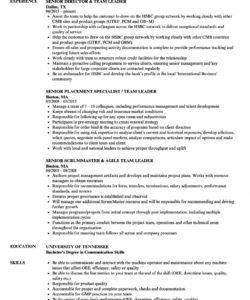free team leader  senior team leader resume samples  velvet jobs team leader job description template