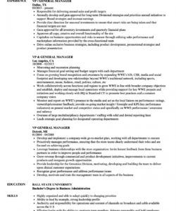 free vp  general manager resume samples  velvet jobs general manager job description template