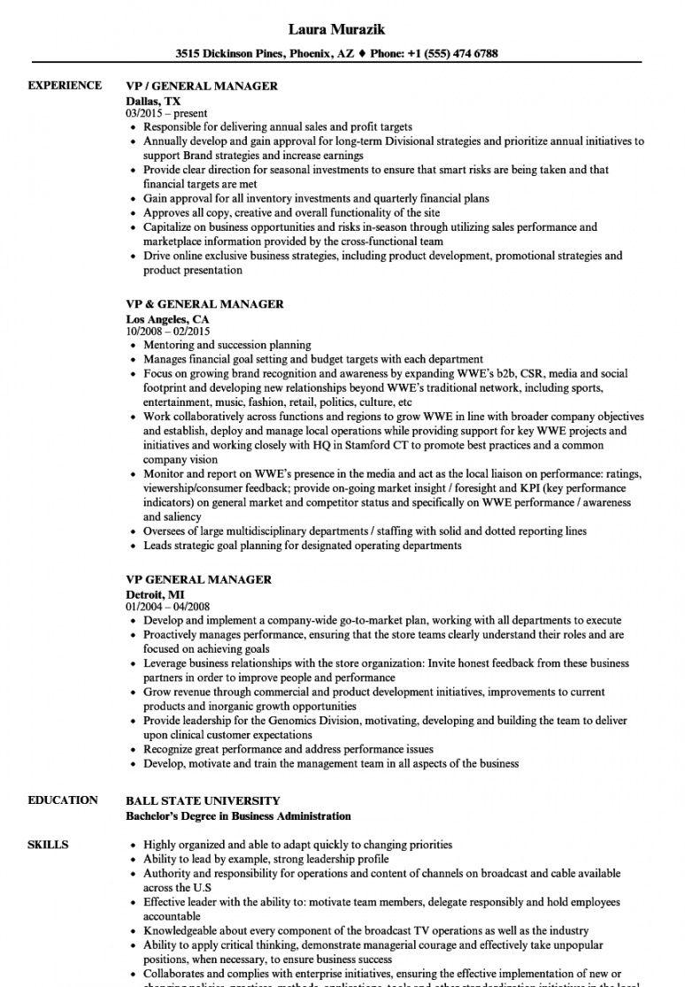 free vp  general manager resume samples  velvet jobs general manager job description template