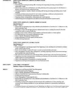 sales executive assistant resume samples  velvet jobs executive assistant job description template