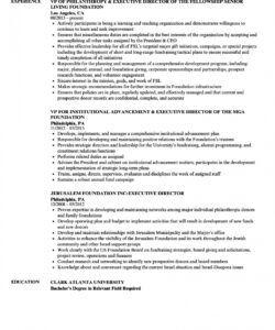 free foundation executive director resume samples  velvet jobs executive director job description template and sample