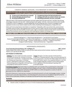 free vice president resume example  distinctive career services vice president of operations job description template and sample