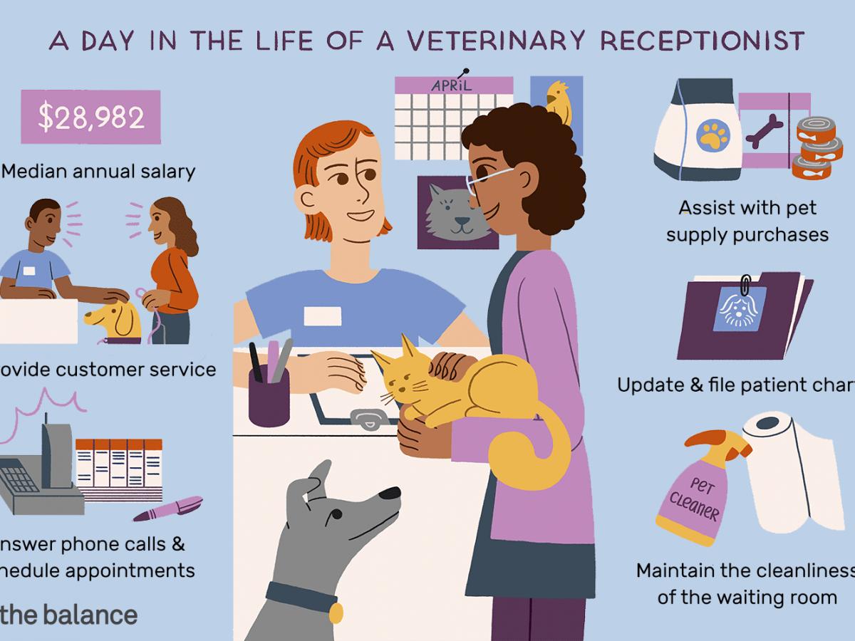 veterinary receptionist job description salary & more veterinary receptionist job description template
