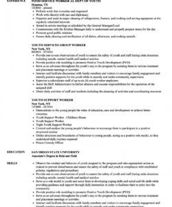 Professional Youth Worker Job Description Template Word Sample