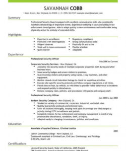 Professional Official Job Description Template Doc Example