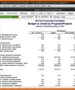 Costum Nonprofit Operating Budget Template Word Sample