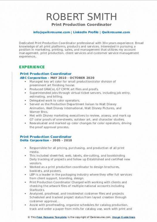 Costum Program Coordinator Job Description Template  Sample
