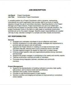 Costum Project Manager Job Description Template Free Word