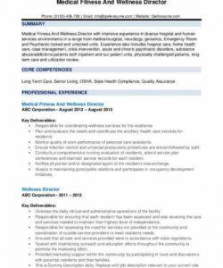 Costum Safety Director Job Description Template Pdf Sample