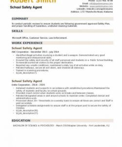 Costum Safety Manager Job Description Template Word Example