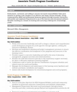 Professional Program Coordinator Job Description Template  Example