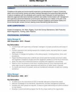 Professional Safety Director Job Description Template Doc Example