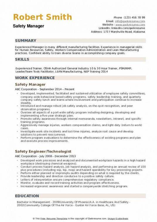 Professional Safety Director Job Description Template Pdf