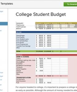 Professional University Department Budget Template  Sample