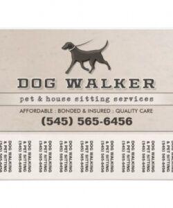 Costum Pet Sitting Flyer Template  Sample
