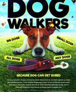 Professional Dog Walking Flyer Template Excel Sample
