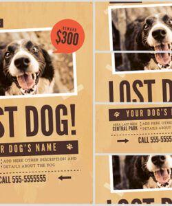 Professional Missing Pet Flyer Template Pdf
