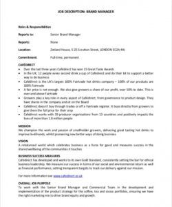 Professional Practice Manager Job Description Template Excel Example