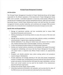 Professional Recruitment Consultant Job Description Template Excel Example