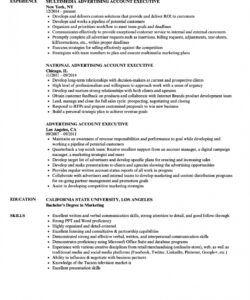 accounting executive resume template  mt home arts executive director job description template
